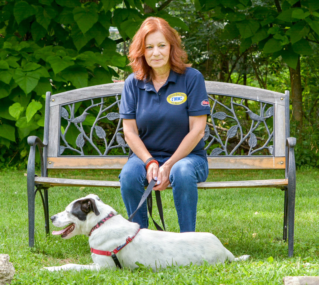 About Me Waggly Tails Dogs Training Robbinsville Nj